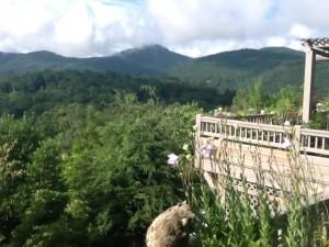 mountain_views