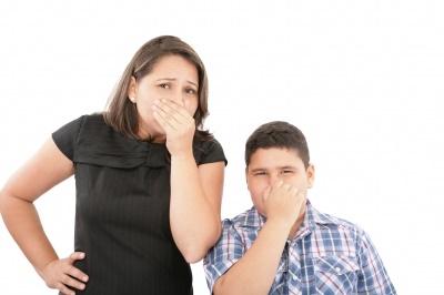 mold odors remidiation